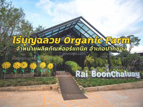 ไร่บุญฉลวย Organic Farm จำหน่ายผลิตภัณฑ์ออร์แกนิค